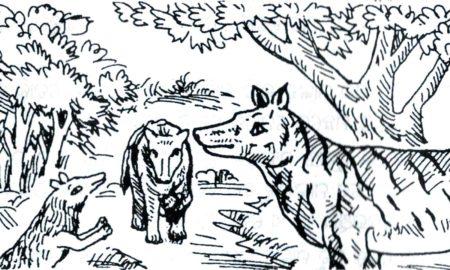 Basudev Mohapatra's odia Neeti Katha Neula Baida