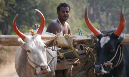 Kalindicharana Panigrahi's odia story Duteeyaa Chaanda