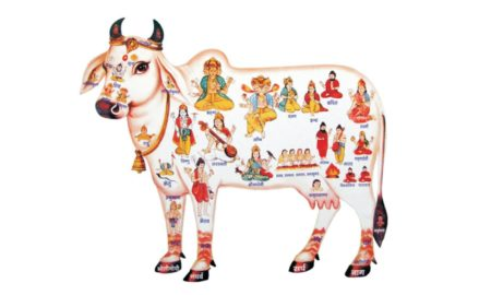 Jyotsna's Editorial article gomaataa aama samurddhira baahaka