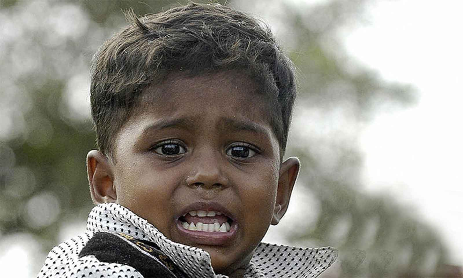 Kanishtha Kishore Sahu's odia story for children Singha Badhiba
