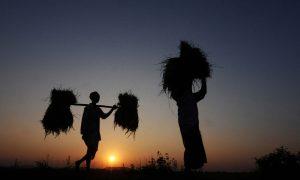 Hemanta Kumar Rout's odia short story Saruchaula